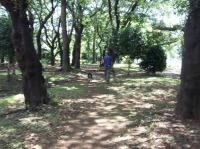 0819散歩2