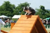 070708imageS1