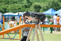 070708imageS2