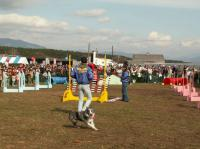 農協祭M2