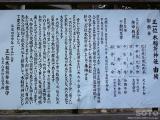 白鷹ヤナ公園(4)