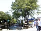 白鷹ヤナ公園(2)