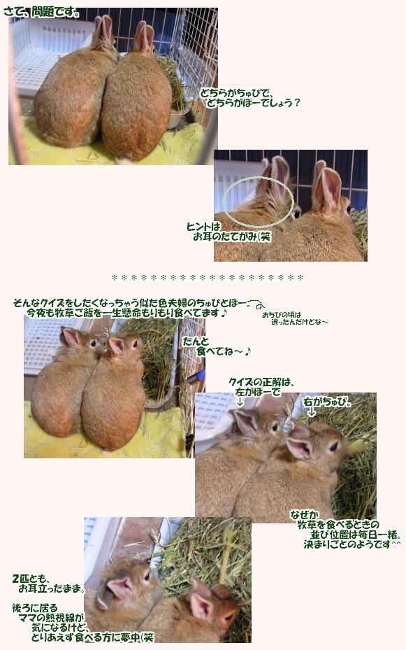 bokusoumogumogu0702.jpg