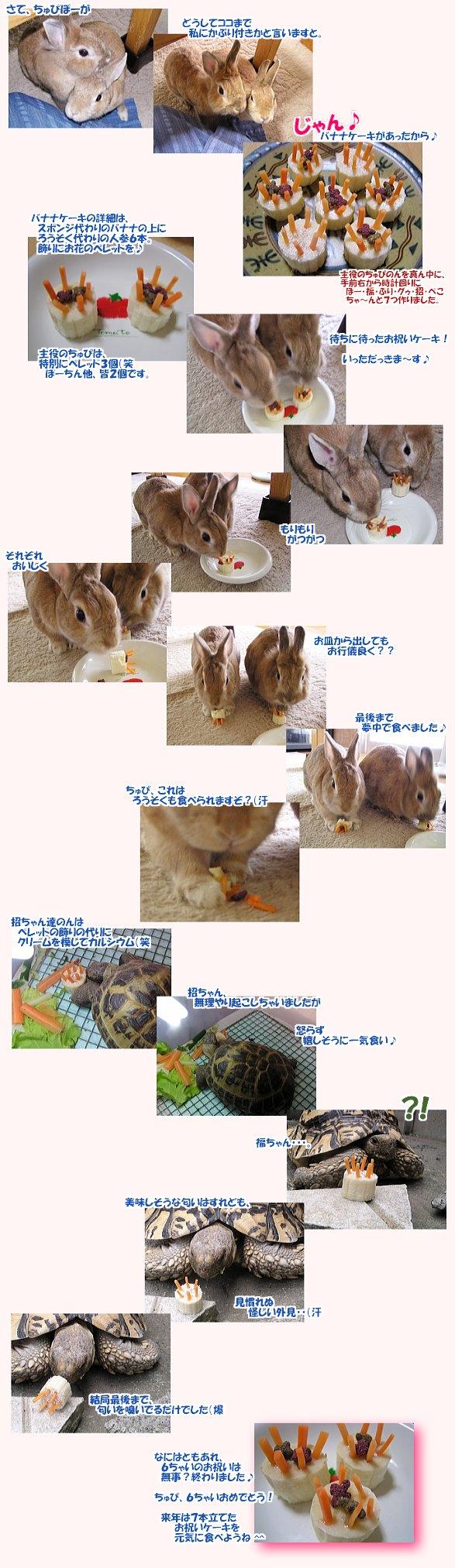 oiwaike-ki0707.jpg