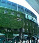 甲子園球場!!