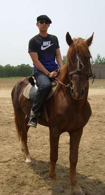 rides on ウマ