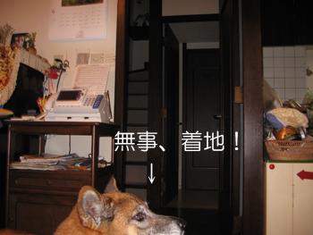 20070620010547.jpg