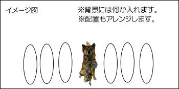 20070809162422.jpg