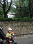 本当に横浜市ですか