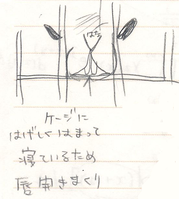 20070213-3.png