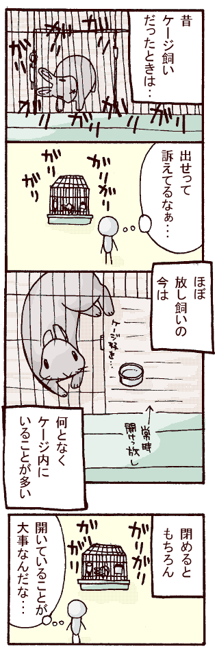 20070412.png