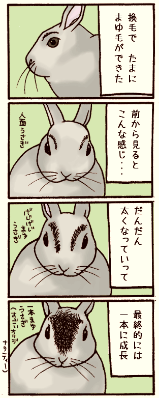 20070424.png