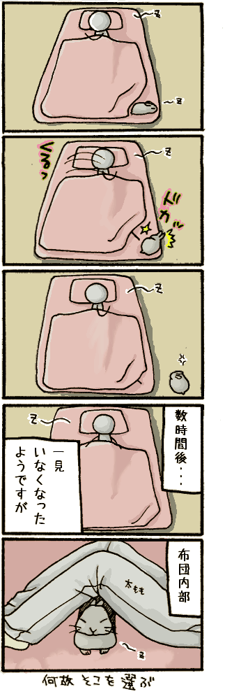 20070425.png