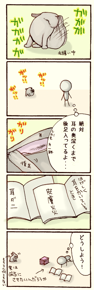 20070426.png