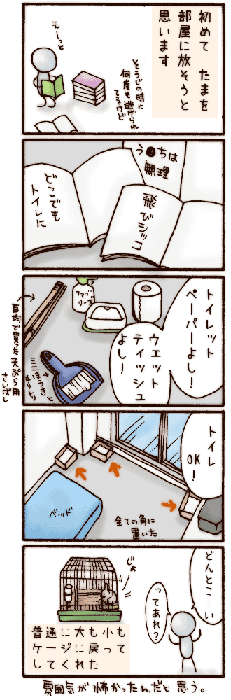 20070504.png