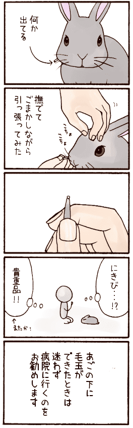 20070827.png