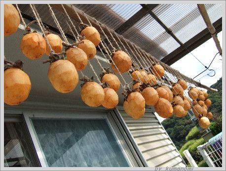 2006吊るし柿