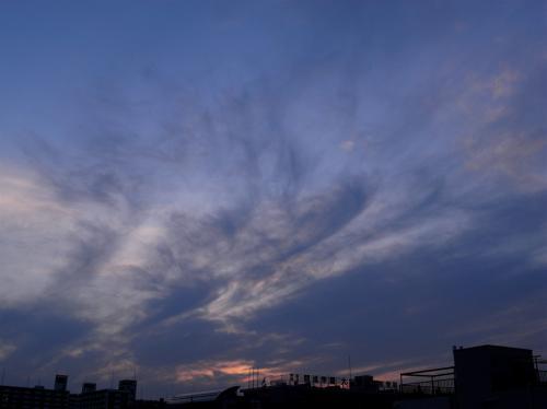 20070620-6.jpg