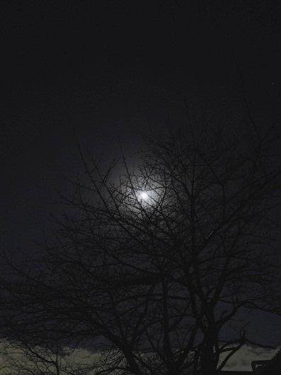 120208-1.jpg
