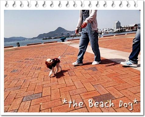 2011-04-10-023-007.jpg