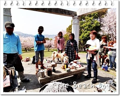 2011-04-10-050-014.jpg