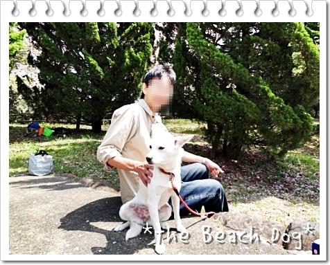 2011-04-10-070-016.jpg