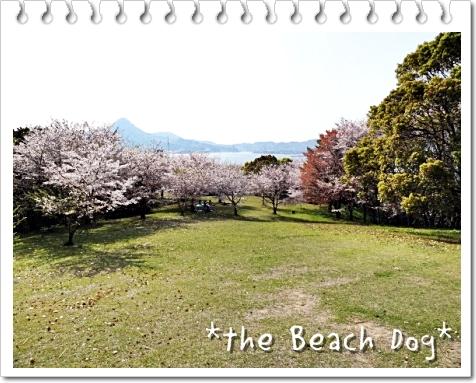 2011-04-10-094-019.jpg