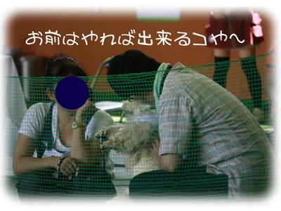 20110723_1.jpg