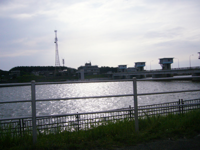 P1250054.jpg