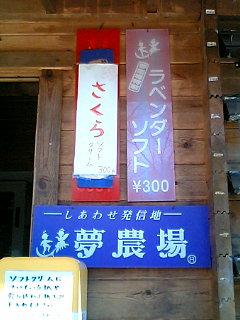kamikoti02