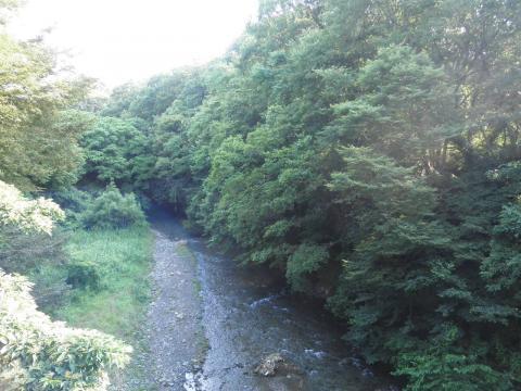 夏の葛葉渓谷39