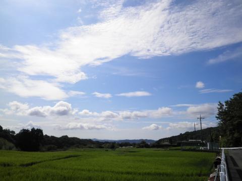 夏の雲16