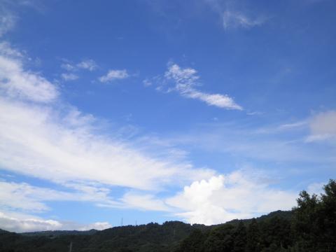 夏の青空63