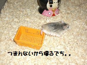 sasuke8.7.3.jpg