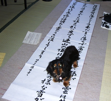 2007_0318kikiburogu0017.jpg