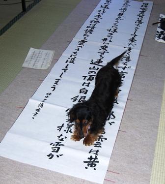 2007_0318kikiburogu0018.jpg