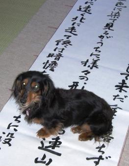 2007_0318kikiburogu0021.jpg