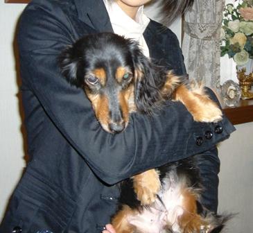 2007_0413kikiburogu0004.jpg