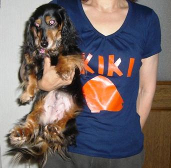 2007_0617kikiburogu0002.jpg