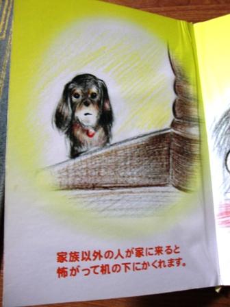 2007_0710kikiburogu0012.jpg