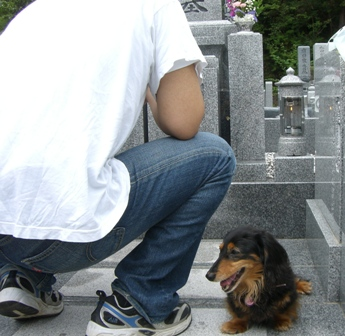2007_0716kikiburogu0001.jpg