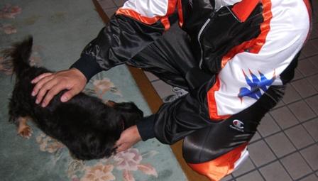 2007_0901kikiburogu0009.jpg