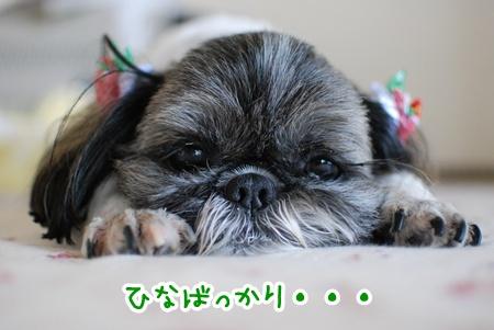 DSC_7937_20110707151120.jpg