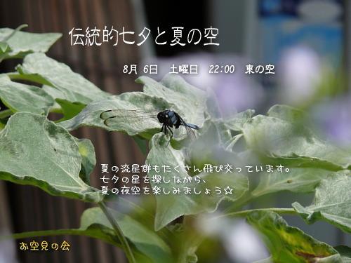 2011 8 6 伝統的七夕と夏の空