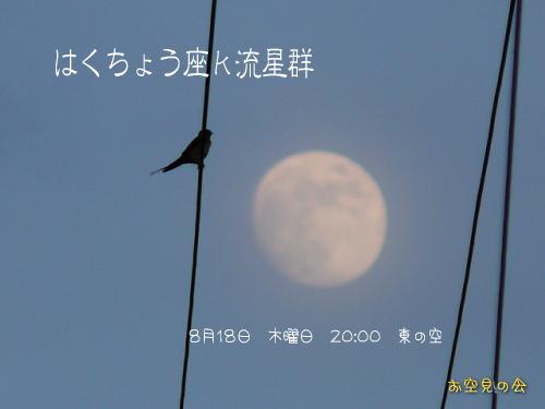 2011 8 18 はくちょう座κ流星群