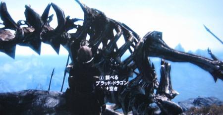 miyu_5822.jpg