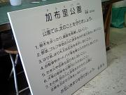 CA340689.jpg