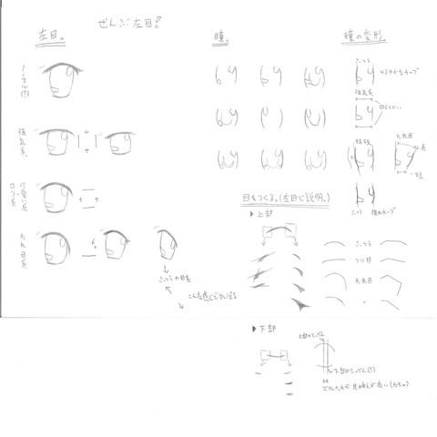 目の描き方・・・というか目の種類について?w