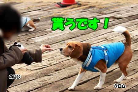 11_20120308230454.jpg