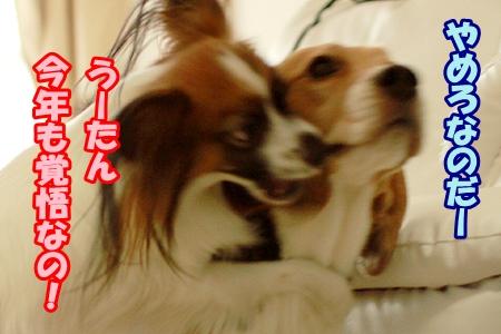 1_20120102233921.jpg